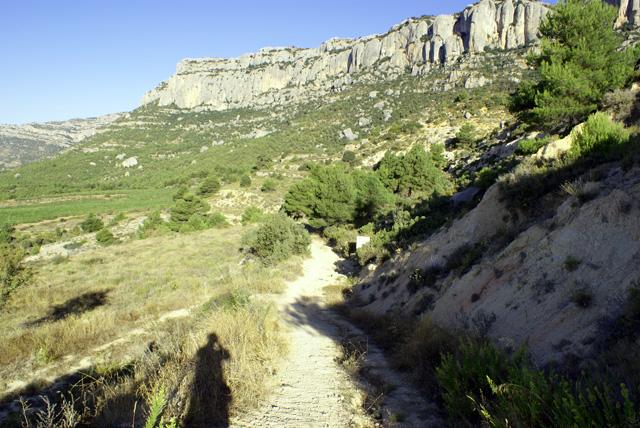 El camí cap al grau de Salfores comença fent baixada, fet molt inusual quan es tracta de pujar a Montsant per qualsevol lloc.