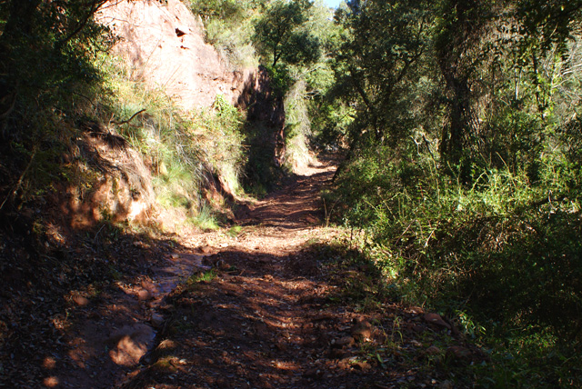 Pujant pel camí del barranc Carcaix, al qual desemboca el sender que acabem de deixar pujant des del Molí de l'Esquirola.