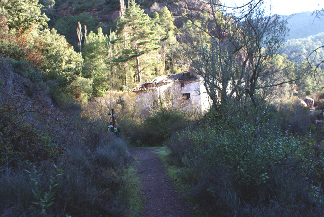 20111127moliesquirola