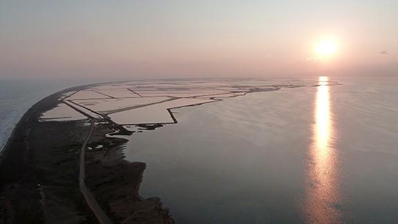 Punta de la Banya, al Delta de l'Ebre. Foto: Àlex Capafons.